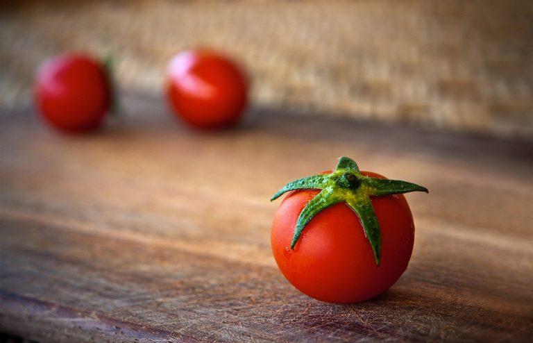 the humble tomato