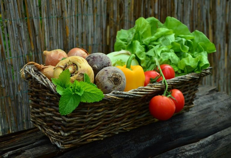 fill your basket with the right mix of food for health
